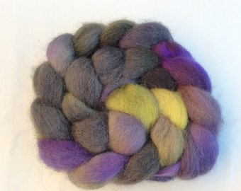 Hand Dyed Texel wool tops