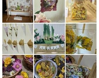 Individual Portions of Conetti, Real Petal Confetti, Wedding Confetti, Natural Confetti, Organic Confetti, Biodegradable Confetti, Scented