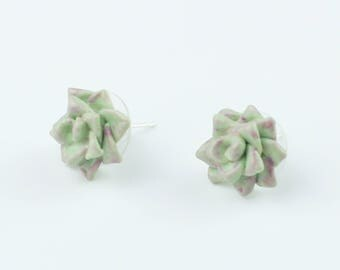 Succulent earrings Stud 925 Silver Charm Cactus Terrarium  Mothers Day Gift for Her Polymer Clay Succulent minimalist style