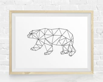 Film Director Polar Bear Polar Bear Art Polar Bear Print