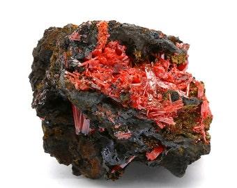 Crocoite Crystal Cluster on Matrix – 222g