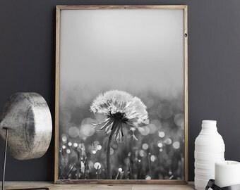 Dandelion Wall Art, Dandelion Print, Floral Print, Black and White Print, Flower Poster, Digital Download - 068