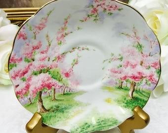 "Royal Albert Crown China ""Blossom Time"" orphan saucer."