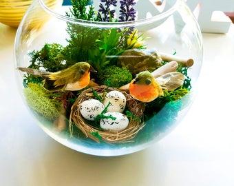 Moss Terrarium, birds, eggs, D.I.Y Terrarium Kit, Terrarium, Dried moss terrarium, Fish bowl Terrarium, Easter Decoration, Bird nest