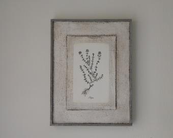 Antique Botanical Herb Print on Wood vintage botanical print, antique botanical print, farmhouse decor, garden print, herb print