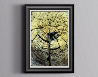 Photo print fine art photography abstract printing 8x12 10x15 12x18 14x21 16x24 18x27 design photo old wood foto color strike wood wall art