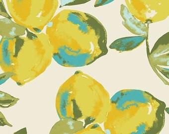 Yuma Lemons in Mist - bari j. Canvas fabric