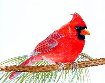 Cardinal painting original watercolor male cardinal 9x11