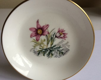 Royal Worcester Bone China Pin Dish