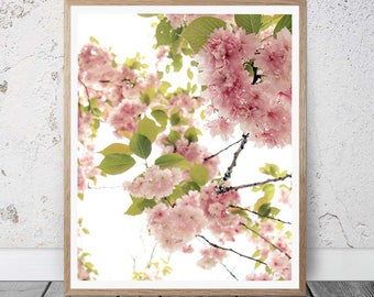 Pink Flower Prints, Shabby Chic Pink Decor, Pink Blossoms Spring Prints, Pink Spring Blossoms Print, Romantic Pink Floral Shabby Chic Prints