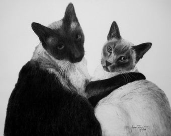 Charcoal Portrait of two cats