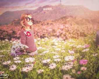 Hollywood Field Digital Backdrop - Photography Los Angeles - Digital Portrait Photo Background - Spring Daisy Flower field -California Field