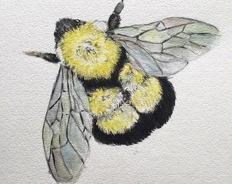 Watercolor Bee Print