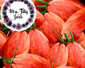 ARTISAN PINK TIGER 10 tomato seeds pink green plum tomato profitable quickly