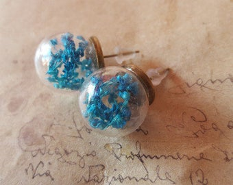 Glass earrings with dried blue flowers