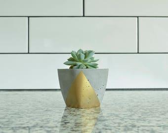 Concrete Succulent Planter, Small, Concrete and Gold, Modern & Trendy