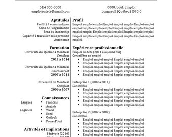 Model CV in a One page summary page