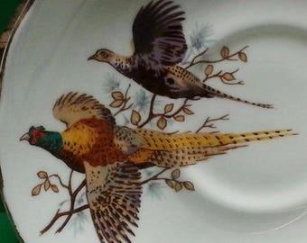 Vintage Duchess Bone China Cup & Saucer Pheasants