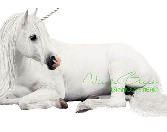 Unicorn, Overlay, digital Png, white, Art, Fantasy, Photoshop, Photo, laying Horse, cut out, real, Fairy, download, Photoshop