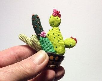 A little cactus