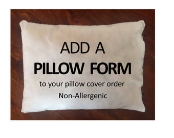 Add a Pillow Form to your pillow cover order