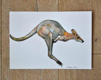 Kangaroo, kangaroo drawing, original artwork, animal art, nature wall art