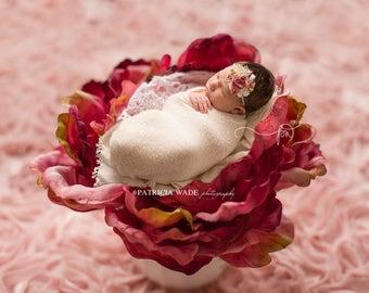 Newborn Digital Background/Rose Peony/Shabby Chic Rose Fabric