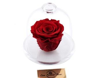 Live Forever Rose in Glass, Live Infinity Rose, Eternity Rose, Immortal Roses %100 Natural LFR0013