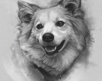 Sketched Custom Dog Portrait