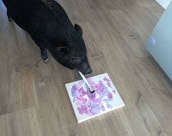 Pig Art, Mojo the Pig, painting made by pig