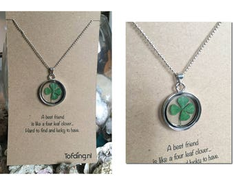 Special Gift ' Four-Leaf Clover '