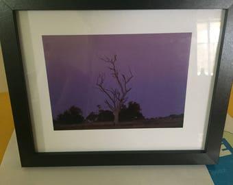Amazing Purple Sky.
