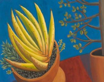 Botanical Painting Succulent Plants Still Life Framed Oil on Canvas