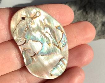 Abalone shell pendant - Big drilled abalone - Seashell crafts - Shell pendant for jewelry making -  Hand polished abalone - Natural abalone