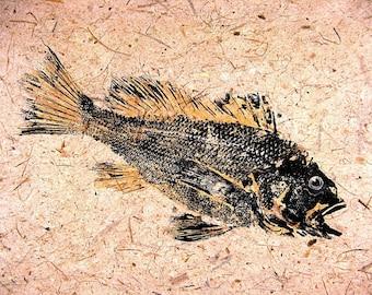 GYOTAKU fish Rubbing Black Sea Bass 8.5 X 11 Fisherman Gift quality Art Print by artist Barry Singer