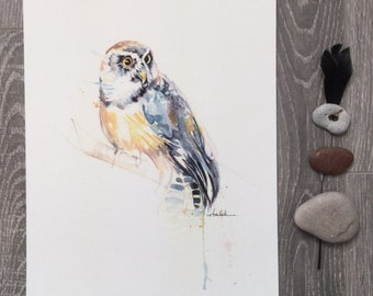 Spectacled Owl painting watercolor bird ART PRINT