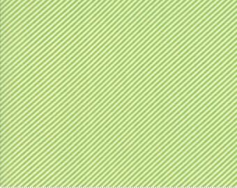 Basics (55071 34) Scrumptious Stripe Green Bonnie & Camille