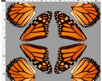 Fat Quarter of Orange Monarch Butterfly Wings Fabric for Doll Costume Fairy Wings, Dollmaking