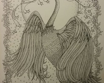 Original Pen and Ink drawing of swan,bird,wildlife,doodle