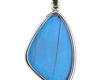 Medium Blue Morpho Butterfly Wing Silver Pendant