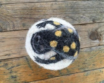 Spotted Salamander , Felted Wool Toy Sculpture