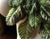 Green Beige Ombre Velvet Millinery Leaves for Bridal, Boutonnieres, Hat, Jewelry or Costume Design  ML 17