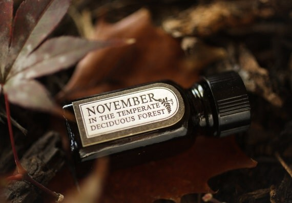 November in the Temperate Deciduous Forest™ - natural perfume oil with black tea, bergamot, mushrooms, forest floor, wet soil, dried leaves