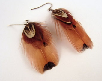 Feather Earrings Ring Neck Pheasant natural real feathers