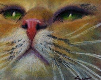 original art  aceo drawing orange tabby cat