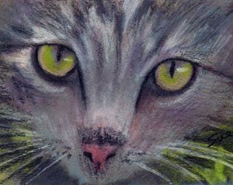 original art  aceo drawing tabby cat kitten