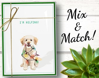 Funny dog Christmas cards boxed set of 15. Funny dog holiday cards set. Funny dog Christmas card. Dog holiday card set. Poodle holiday cards