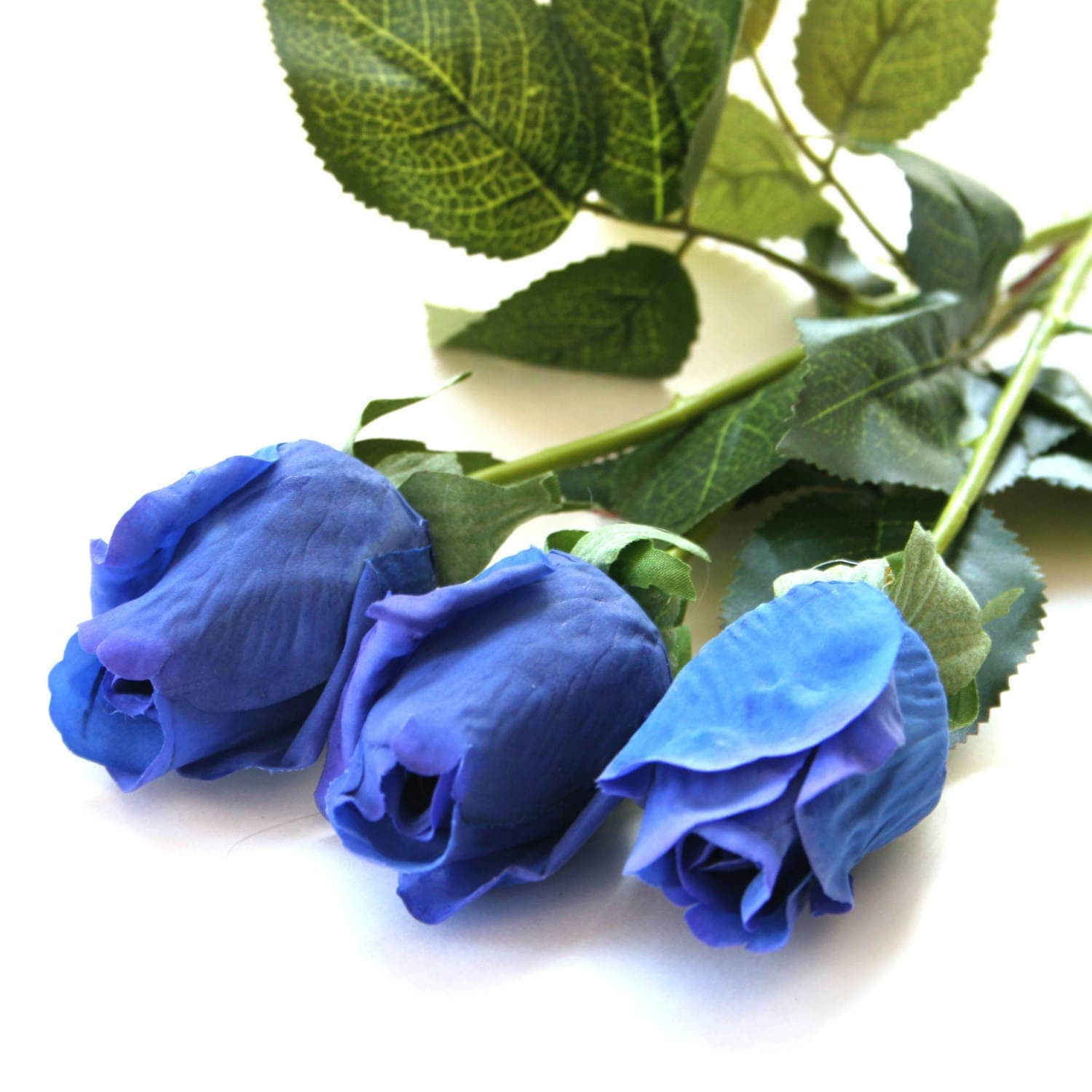 1 long stem gorgeous real touch royal or navy blue rose for Blue long stem roses