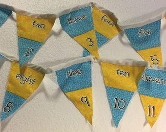 """Learn to Count Numbers Fabric Bunting-Banner-Garland-Decoration 72"""" Home School"""