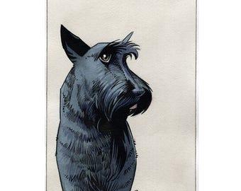Scottish Terrier Original Watercolor Painting Illustration